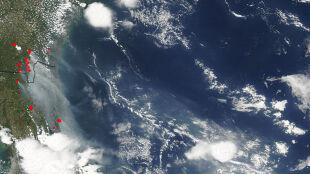 Lot chmury dymu na zdjęciach z kosmosu