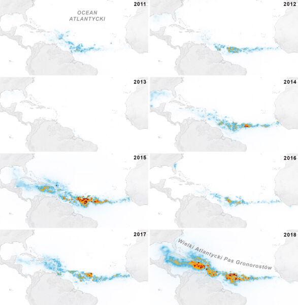 Tak rozrastały się gronorosty w latach 2011-2018 (NASA Earth Observatory/Joshua Stevens/MODIS/Wang, M.)